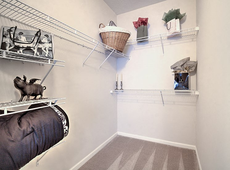 Spacious walk-in closets at Abberly Grove Apartment Homes, Raleigh, NC 27610