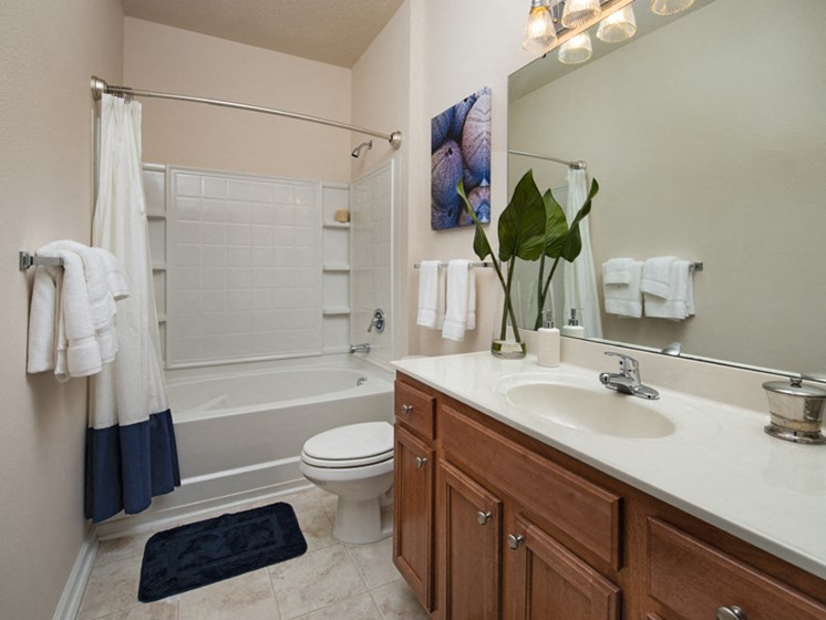 Bathroom Accessories at Abberly Pointe Apartment Homes, South Carolina, 29935