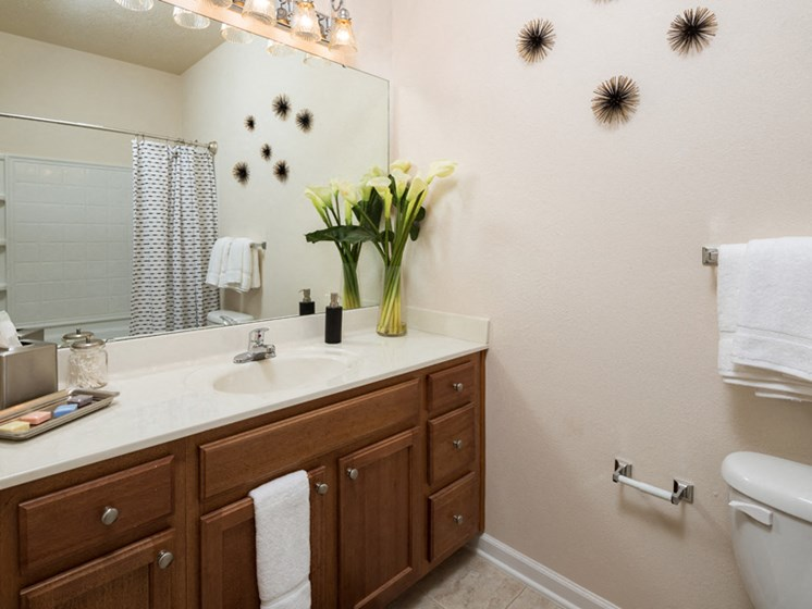 Large Vanity Storage at Abberly Pointe Apartment Homes, Beaufort, 29935