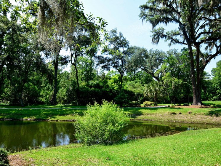 Back-To Nature Escapes at Abberly Pointe Apartment Homes by HHHunt, Beaufort, SC