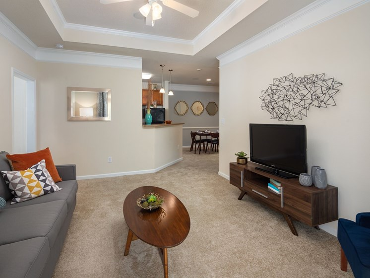 Living Room With Television at Abberly Chase Apartment Homes by HHHunt, South Carolina