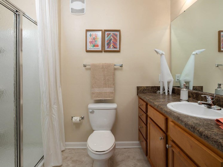 Renovated Bathrooms With Quartz Counters at Abberly Village Apartment Homes, South Carolina