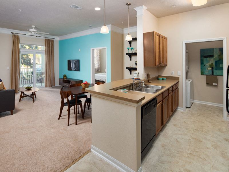 Washer and Dryer in Every Home at Abberly at West Ashley Apartment Homes by HHHunt, Charleston, South Carolina