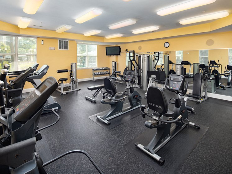 Fitness Center With Updated Equipment at Abberly at West Ashley Apartment Homes, Charleston, South Carolina