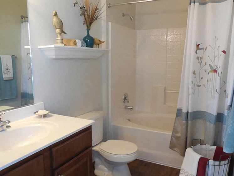 Bathroom Accessories at Abberly Twin Hickory Apartment Homes, Virginia, 23059
