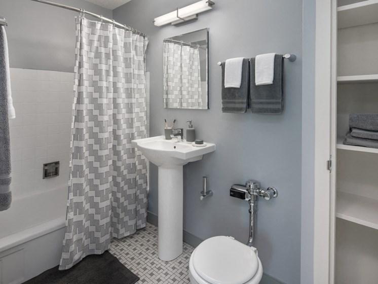 apartment bathroom chicago hyde park