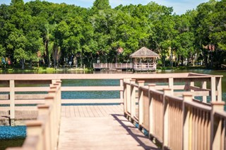 Grande Oasis features a 7-acre lake with picnic areas in 33614.