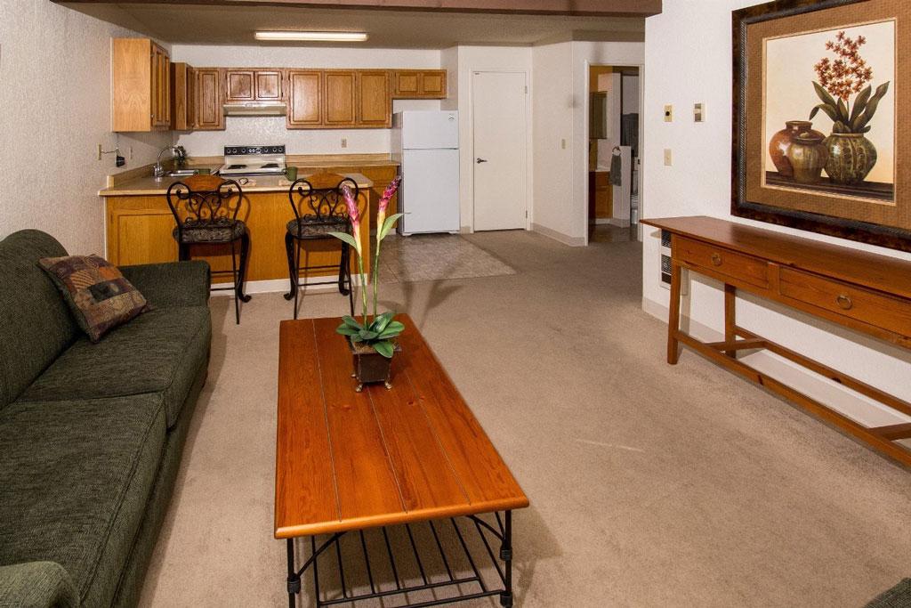 1 Bedroom - Living Room