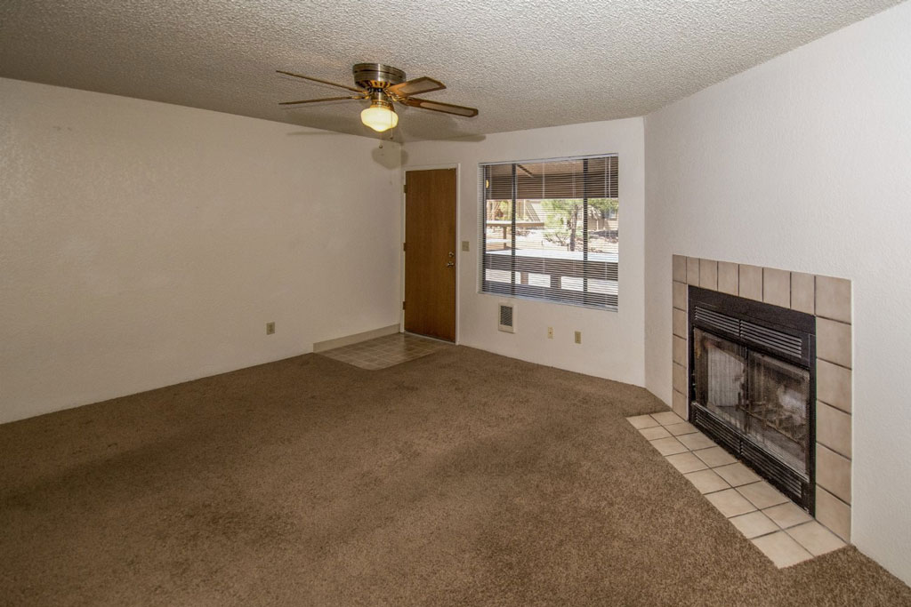 Studio - with Optional Fireplace