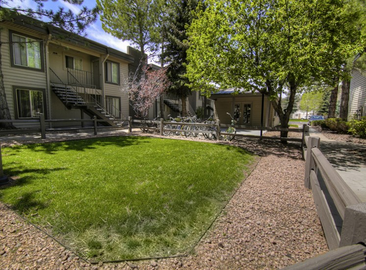 Beautiful Surroundings at Pine View Village Apartments, Flagstaff, AZ,86001