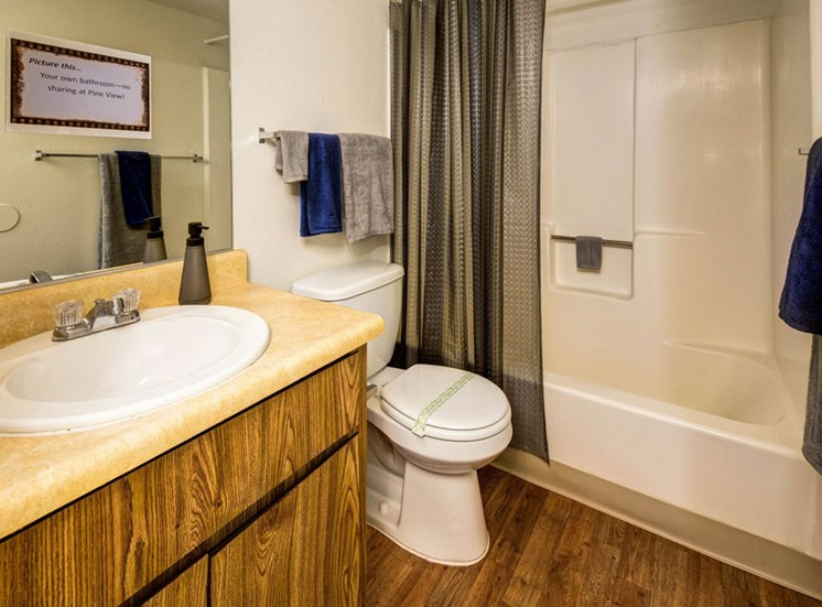 Rent by the Room (4 Bed, 4 Bath) Private Bathroom