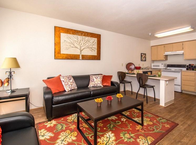 2 Bedroom Apartment Furnished Living Room