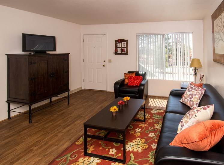 2 Bedroom Apartment Living Room