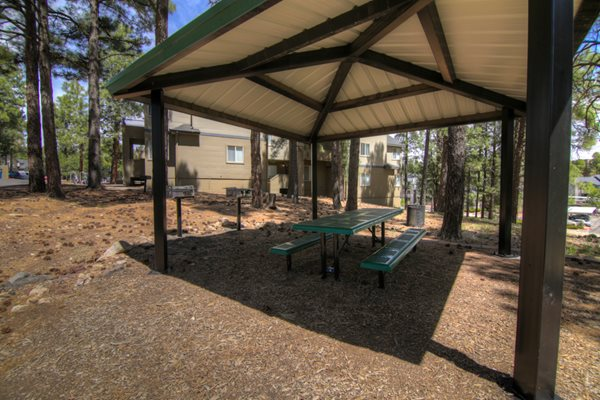 BBQ Grill and Covered Picnic Table at Highland Village Apartments, Flagstaff, AZ