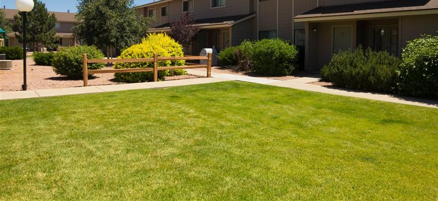 Beautiful Lawns and Park Like Setting at Country Club Vista Apartments, Flagstaff, AZ, 86004