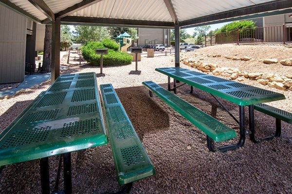 BBQs and Covered Picnic Area at Country Club Vista Apartments
