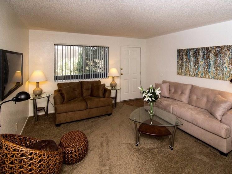 Open Floor plans with Carpet