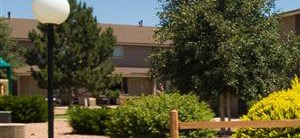 Spacious Lawn Areas with Beautiful Landscaping at Country Club Terrace Apartments, Flagstaff, AZ, 86004