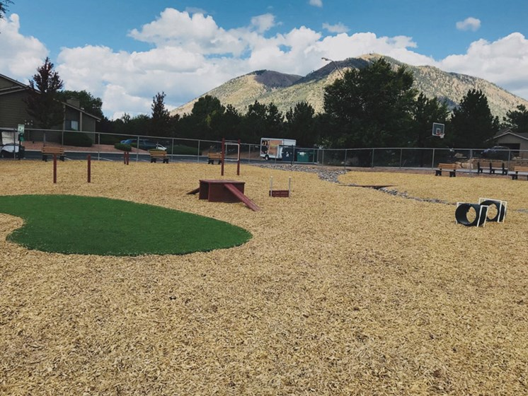 Newly Renovated Dog Park at Country Club Meadows Apartments, 5303 East Cortland Blvd, AZ 86004
