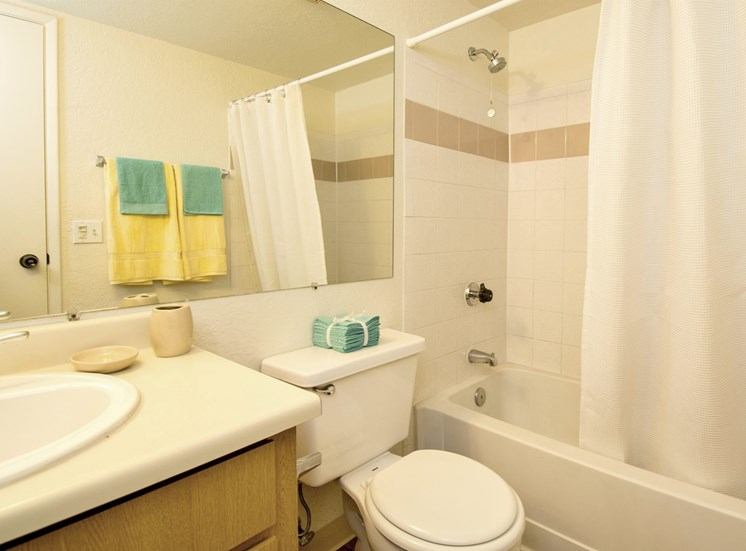2 Bed 1 Bath Apartment Bathroom