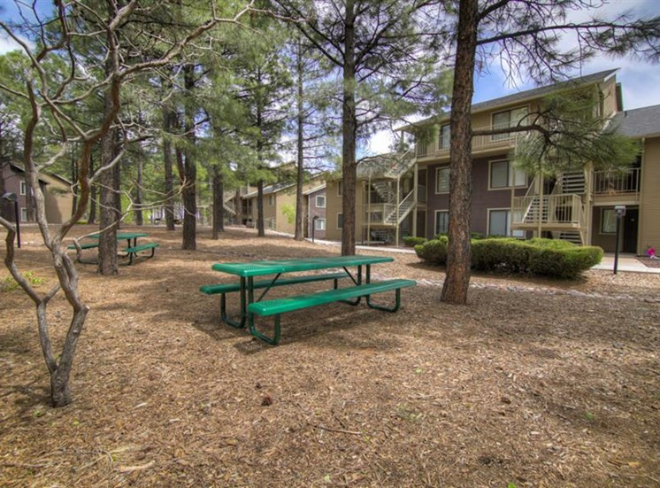 Outdoor Grills and Picnic Gazebo at Woodlands Village Apartments, Flagstaff, AZ,86001