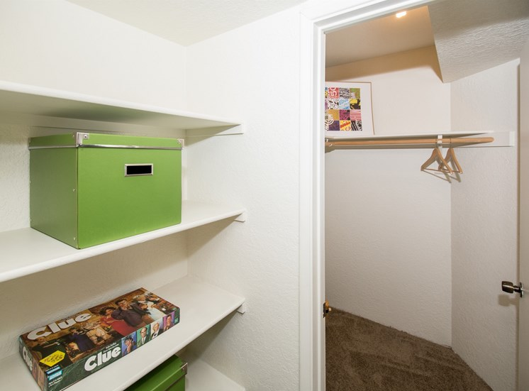 Studio with Built-In Shelves and Walk-In Closet