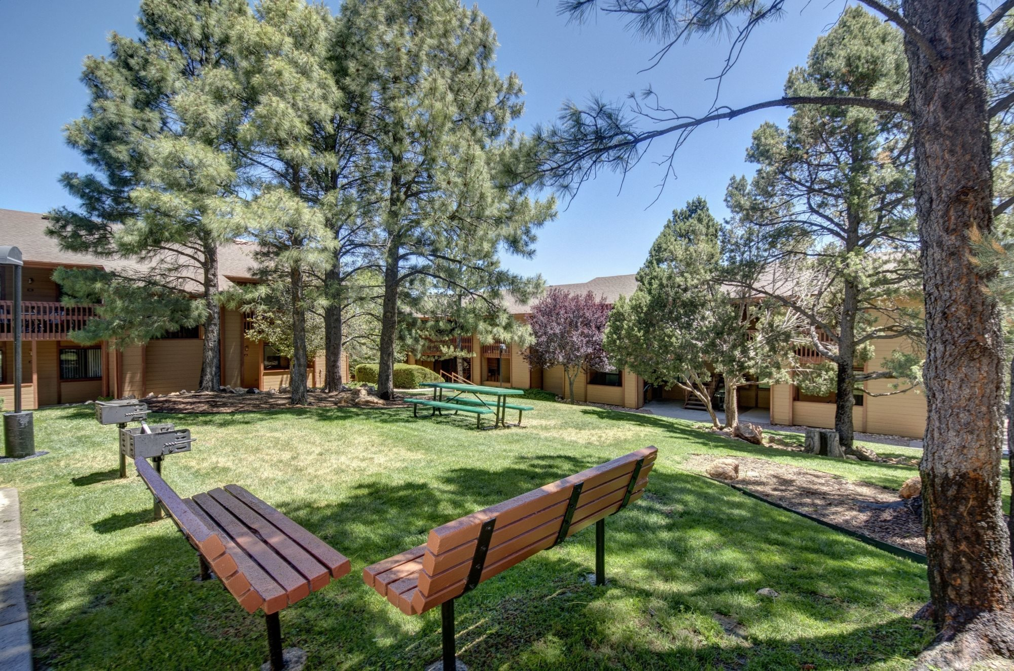 BBQ Grills, Benches, and Picnic Tables at Butterfield Apartments in Flagstaff, AZ
