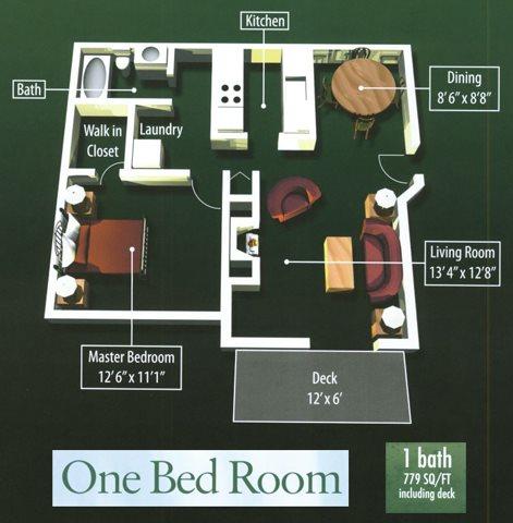 1 Bedroom 1 Bathroom Floor Plan 1