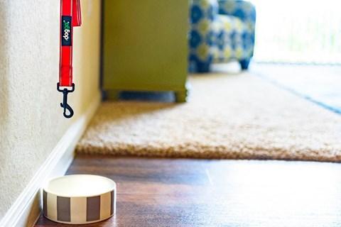 model unit wood floors