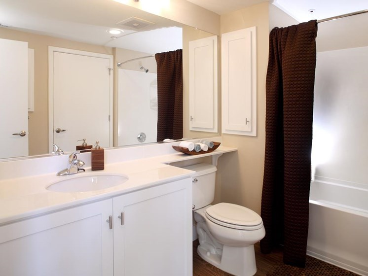 Model home full bathroom