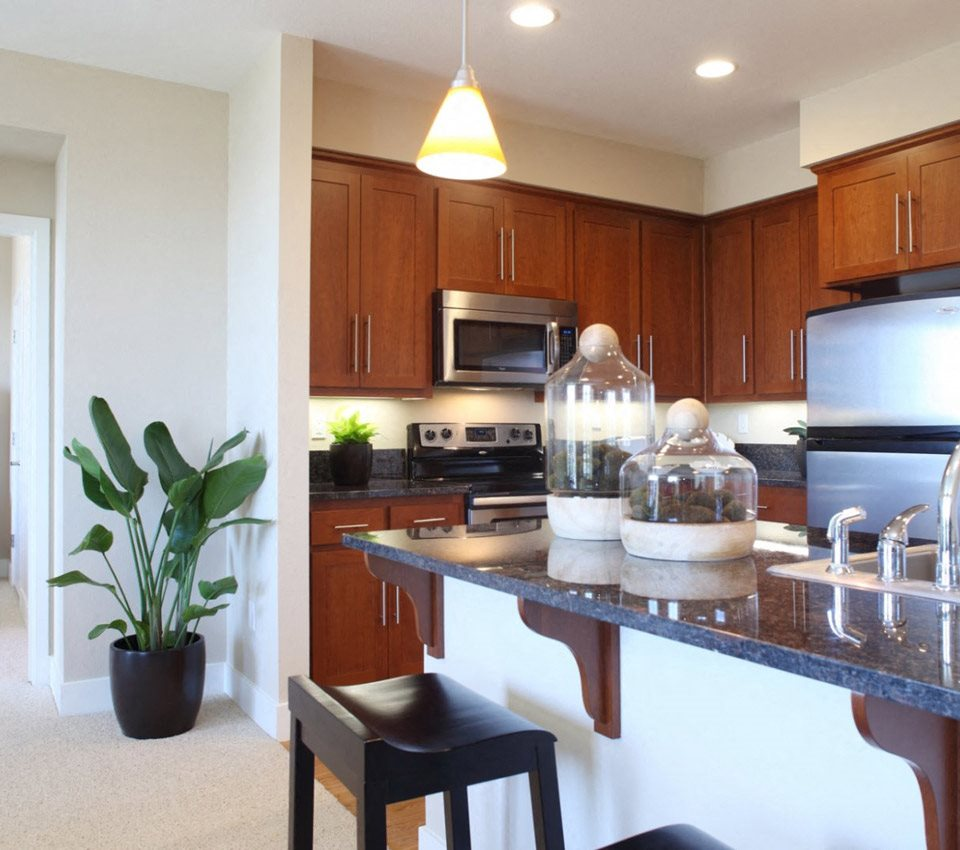 Willow Glen Apartments: Willow Glen Apartments In San Jose