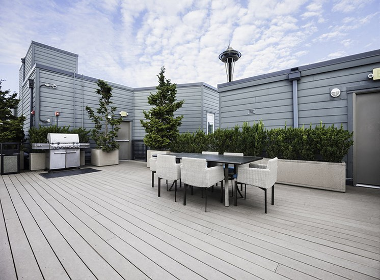 Rooftop lounge area seating and barbeque grill