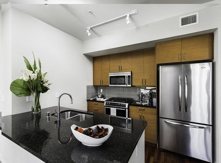 Vacant penthouse apartment home kitchen