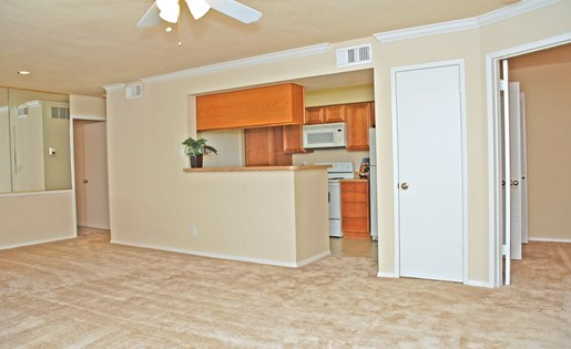 Spacious Apartments at The Bradford Apartments, Webster Texas
