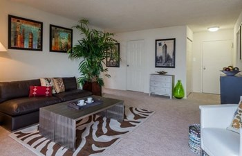 6161 Edsall Road 2 Beds Apartment for Rent Photo Gallery 1