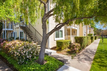 8200 Kern Avenue 1-2 Beds Apartment for Rent Photo Gallery 1