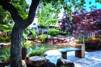 1200 Dale Avenue 2 Beds Apartment for Rent Photo Gallery 1
