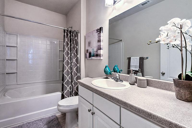 Designer Granite Countertops in all Bathrooms at Abberly Green Apartment Homes, North Carolina
