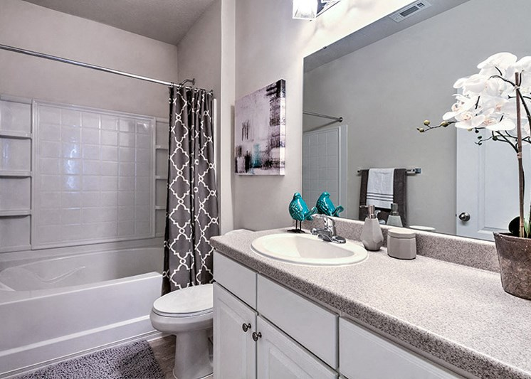 Designer Granite Countertops in all Bathrooms at Abberly Green Apartment Homes, North Carolina