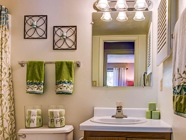 Custom Vanity Lighting And Storage at Walden Pond Apartment Homes by HHHunt, Lynchburg, VA, 24501