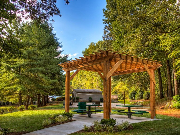Picnic Area with Pergola at Walden Pond Apartment Homes, Lynchburg, 24501