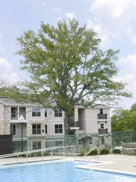 Primrose at Highland Meadows - Active Senior Living homepagegallery 10