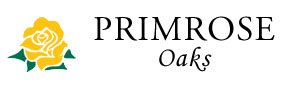 Dallas Property Logo 10