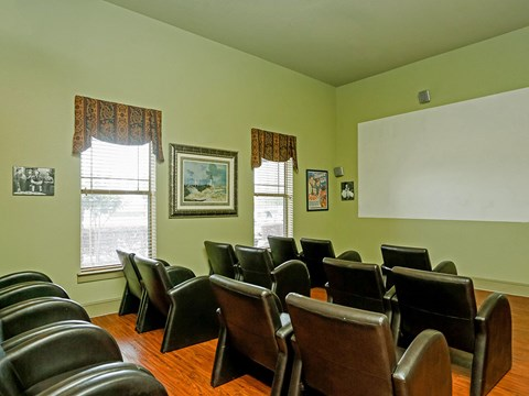 community movie room
