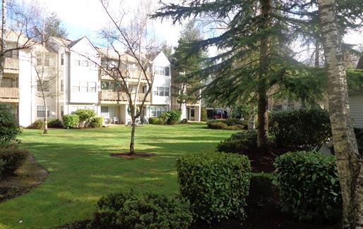Everett photogallery 3