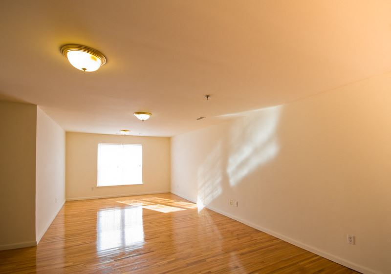 Living room with hardwood floors and large window