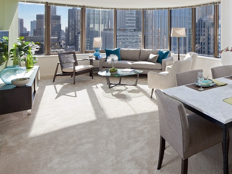 Chicago views from a two bedroom apartment at McClurg Court.