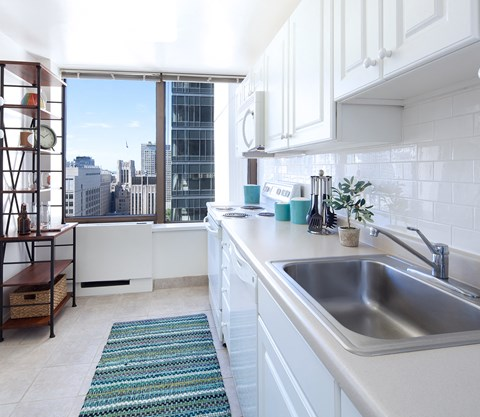 New kitchens with stainless steel appliances at this apartment in Streeterville.
