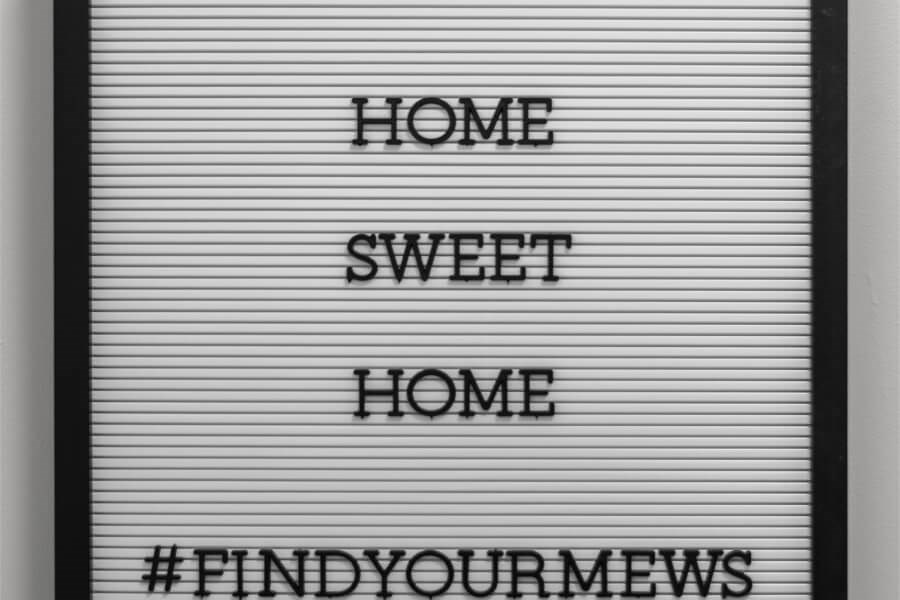 Home-sign