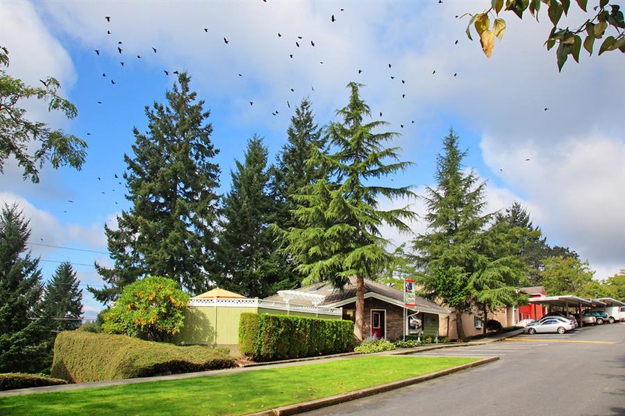 Tacoma photogallery 4